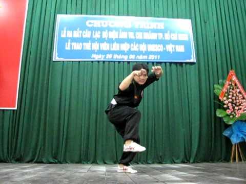 Linh Miêu Độc Chiến - Vo Su Ha Trong Kha Vy.AVI