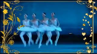 裸体芭蕾舞