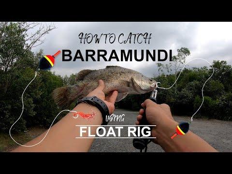 How To Catch Barramundi Using Float Rig: Pulau Ubin Singapore Fishing
