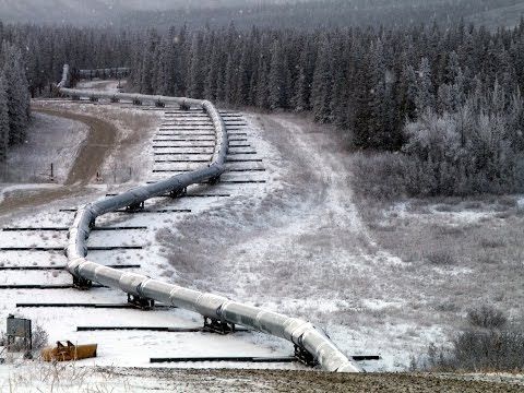 Trans Alaska Oil Pipeline | Aerial View of the Biggest Pipeline (Things to Do Vlog)