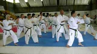 Kata Shorin Ryu Shin Shu Kan Seminario 2009, San José, Libertad - Uruguay - Sensei Shinzato 9ºDan