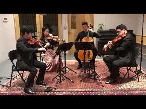 Brahms String Quartet in A Minor, Opus 51, No. 2, Second Movementиз YouTube · Длительность: 8 мин53 с