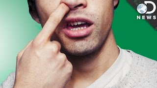 Is Eating Your Boogers Bad For You?