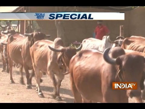 Aaj ki baat Good News: This muslim family in Pune has been running a cow shelter for Four Genration