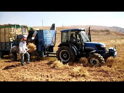 Gezer patoz , seydalı tarım avşar