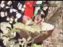 Man must wak- Nigeria vs Biafra- Parley Brown1