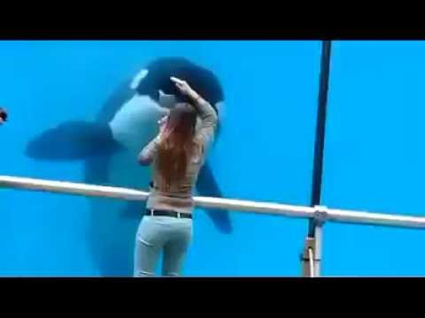 Dancing girl with whale orca beautiful sight