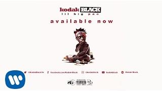 Kodak Black Young Prodigy Audio.mp3