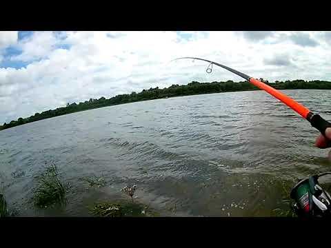Рыбалка на Оке в  Августе 08.08.2019