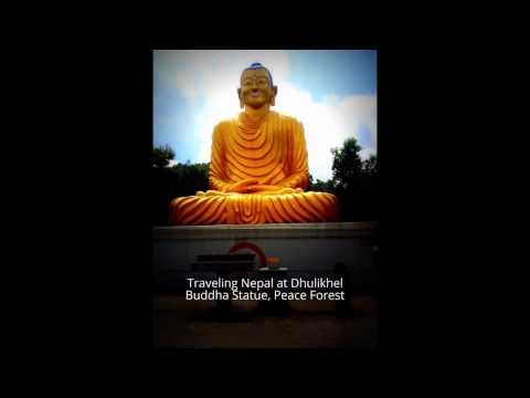 Meditating Buddha Of Peace Forest