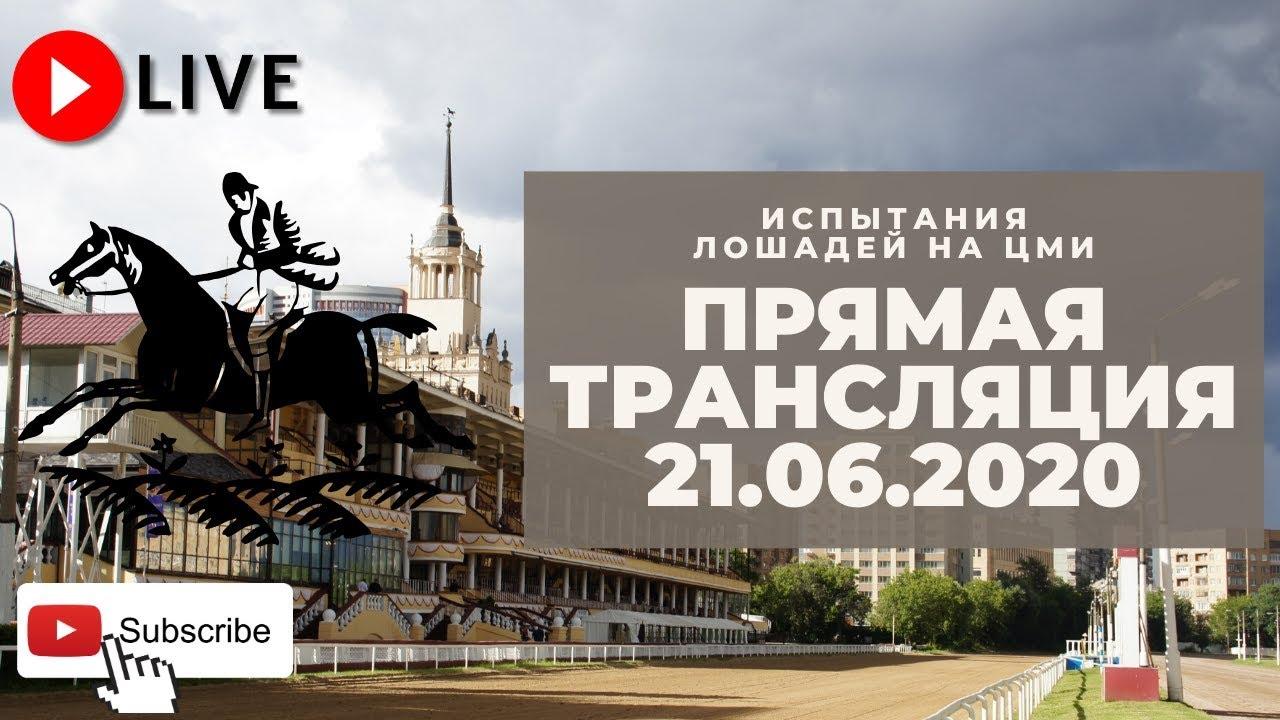 московский ипподром трансляция