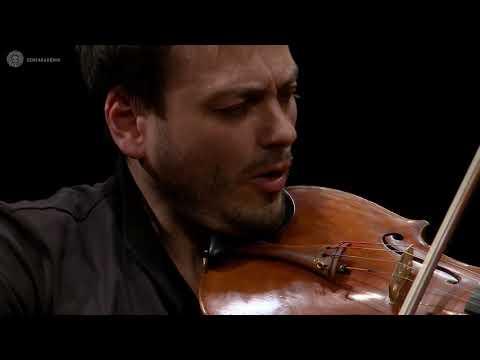 Schumann: Märchenbilder (Rysanov, Maisky) Шуман: Сказочные Картинки (Рысанов, Майская)