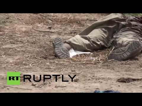 Iraq: Islamic State convoy destoryed in air strikes *GRAPHIC*