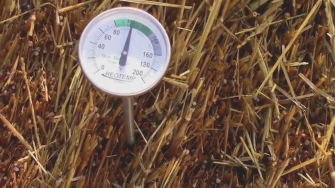 Conditioning My Straw Bales - One is Hot Even in Cold Weather. - YouTube