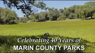 Celebrating 40 Years of Marin County Parks