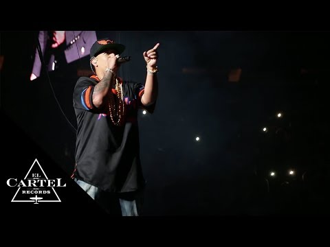 Tiradera Daddy Yankee vs Don Omar #TheKingDom (Live)