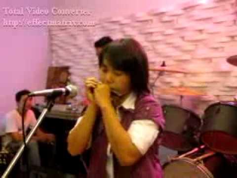 Muabuon - Tinh em con mai - harmonica