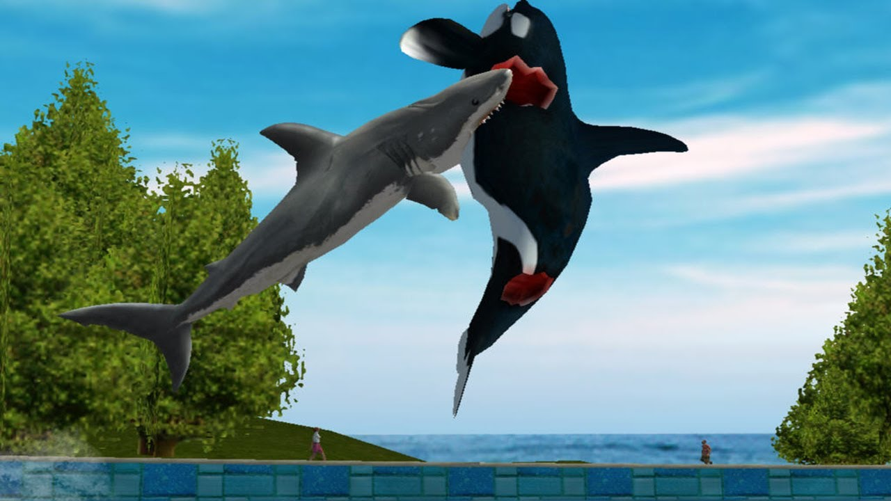 FREE WILLY! - YouTube