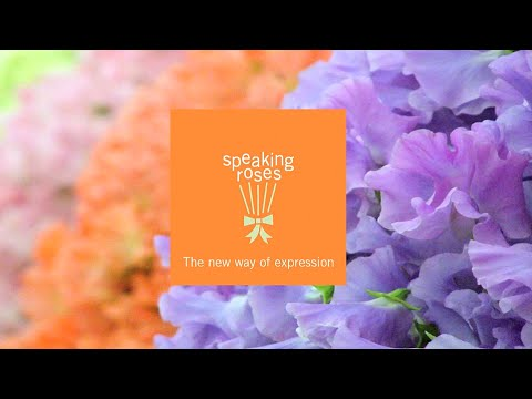 The Speaking Roses Business Opportunity