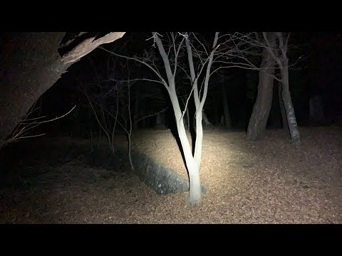 超怖い心霊 ghost live 長野県最恐心霊ライブ