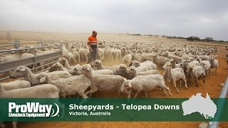 ProWay Sheepyards - Telopea Downs Victoria, Australia