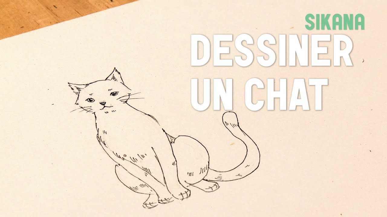 Hervorragend Dessin : Dessiner un chat - HD - YouTube HL17
