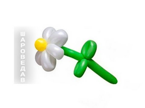 Ромашка из шаров шдм / Daisy of balloons.