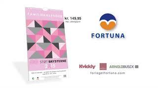 Fortuna StoetBrysterne2014 V3 H264HD