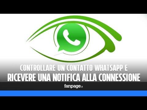 collegamento di contatti WhatsApp Capricorno datazione pesci
