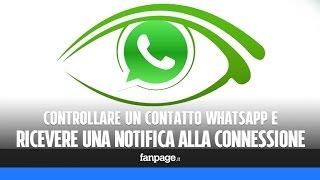 WhatsApp: controllare un contatto e ricevere una notifica quando si connette