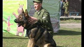 Новые имитаторы взрывчатых и наркотических веществ увеличат продолжительность жизни служебных собак