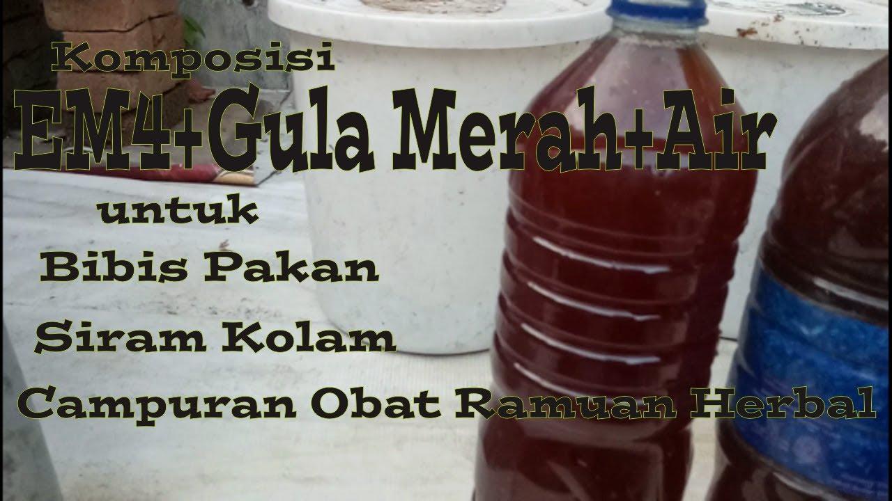 Komposisi Em4 Gula Merah Air Untuk Bibis Pakan Siram Kolam