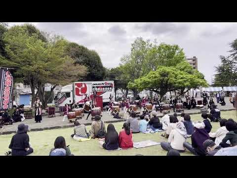 Festival Hanami di