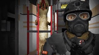 YOU CONTAIN THE SCPS! - SCP Containment Breach Nine Tailed Fox Mod