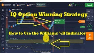 IQ option 97% winning strategy -  otc marketing strategy -What is 'Williams %R