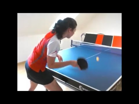 Table Tennis In Room In Own House
