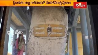Masa Shivaratri Worships to Endala Mallikarjuna in Ravivalasa in Srikakulam District