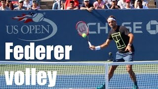 Federer - Volley - Front View - Court Level