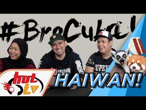 Bro Cuba : Berjinak-jinak dengan HAIWAN!
