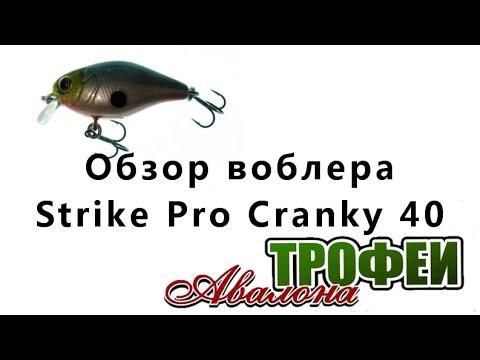 """Обзор воблера Strike Pro Cranky 40 - магазин """"Трофеи Авалона"""""""