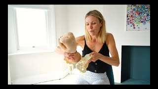 How the Baby Moves through the Pelvis - A Demonstration