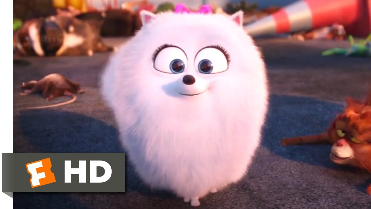 Download The Secret Life of Pets - Gidget Kicks Butt! Scene | Fandango Family