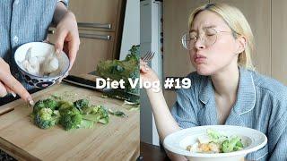 EN)Diet Vlog #19?새우 좋아하새우..?존맛…