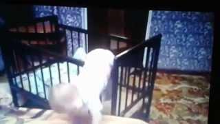 clip em bé hài hước