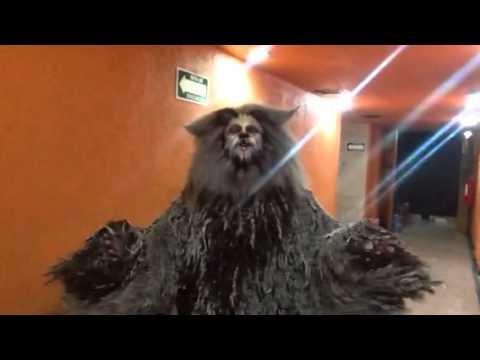Francisco Céspedes en CATS como GATUSALEM