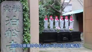 【品川区】品川歴史探訪~江戸時代から愛された品川の桜~