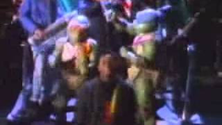 Teenage Mutant Ninja Turtles - Theme song