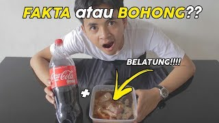 Download Video COCA COLA + DAGING BABI = KELUAR BELATUNG??? [EXPERIMENT] MP3 3GP MP4