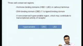 Mod-06 Lec-21 Regulation of gene expression by steroid hormones