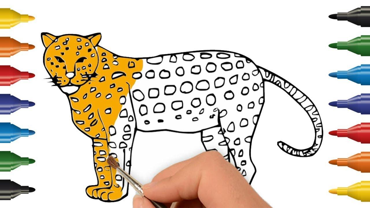 Parentune - Free Printable Cheetah Coloring Pages, Cheetah ... | 720x1280